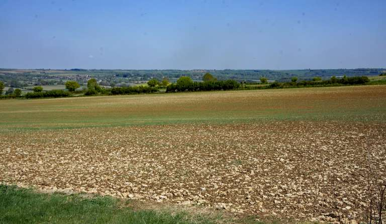 Across the fields towards Chadlington - from Chilson Hill