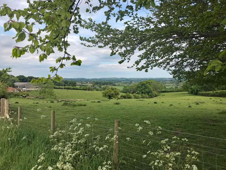From the entrance to Pudlicote Farm, towards Charlbury