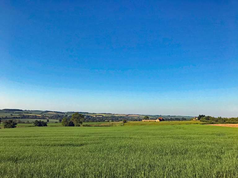 From opposite Pudlicote Farm entrance, looking towards Ascott Under Wychwood